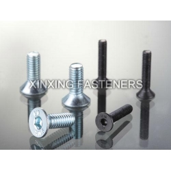 Hexagon Socket Countersunk Head Cap Screw