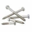 Hexagon Wood Screws