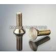Flat Countersunk Square Neck Bolts